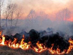 Які штрафи загрожують волинянам за пожежі в екосистемах