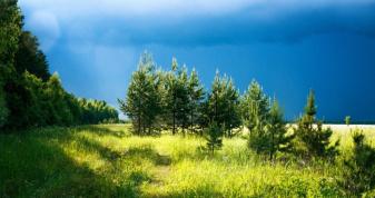 Прогноз погоди у Горохові на 5 липня