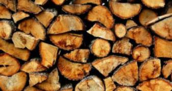 Де жителі Камінь-Каширщини зможуть придбати паливні дрова