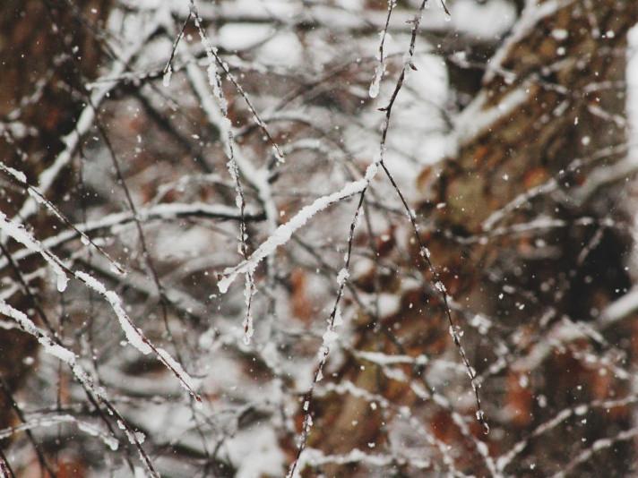 Погода у Горохові на середу, 29 січня