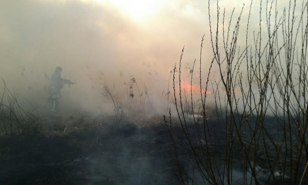 Рятувальники гасять пожежу