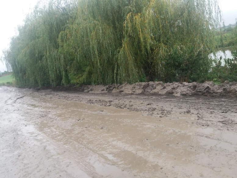 Дорога тоне в болоті