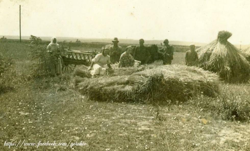 Село Старостав Горохівського району (Жнива). Фото з приватної колекції Івана Хвищуна
