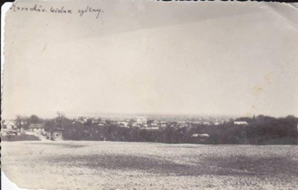 Перше фото: 1930-ті роки. Вид на місто Горохів.