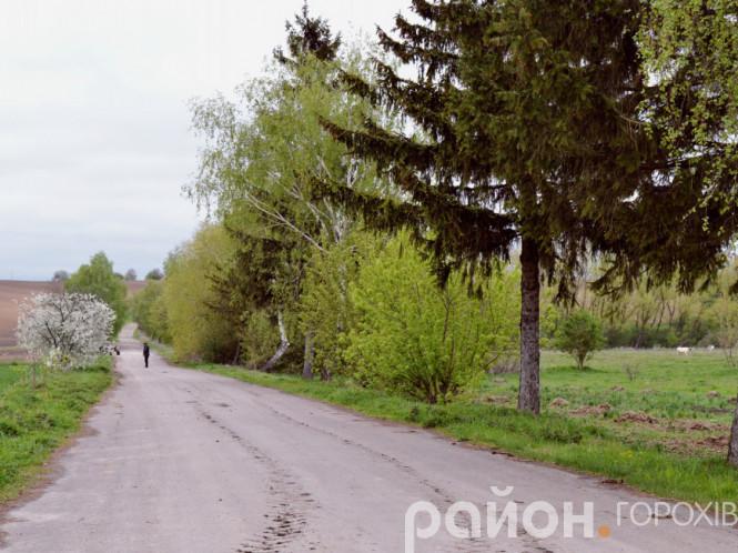 Дорога у селі Новостав, яка веде на вулицю Середня