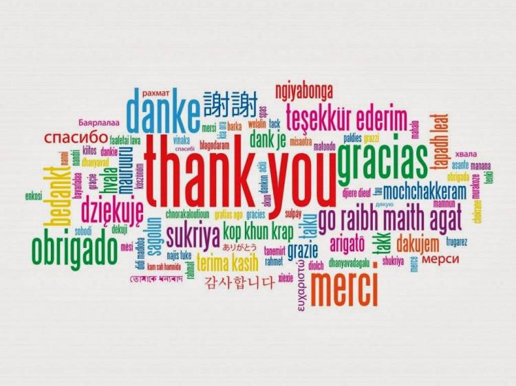 11 січня – Міжнародний день «дякую» - Район Горохів