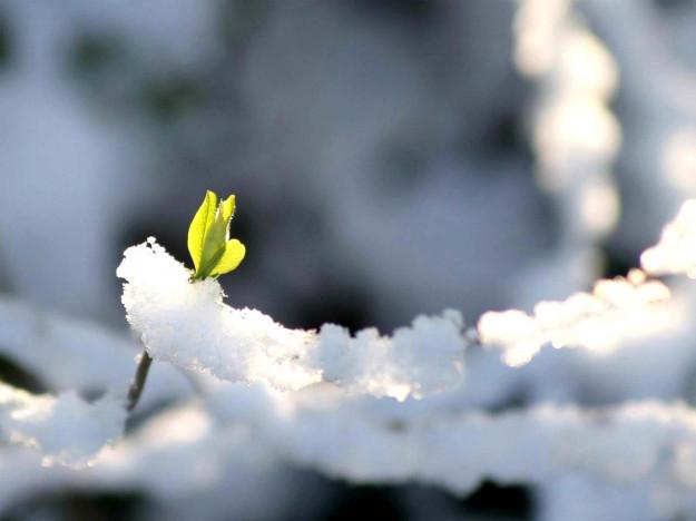 Прогноз погоди у Горохові