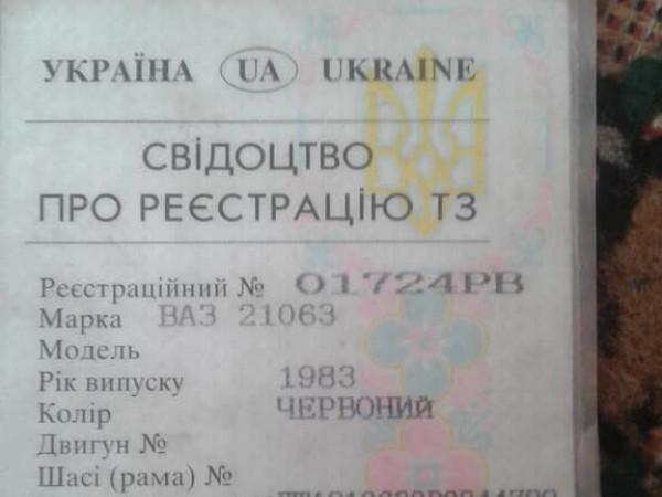 Лучанка знайшла документи горохівського водія