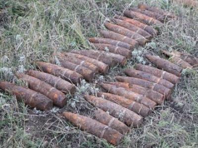 Під час суцільного розмінуванняу Горохівському районі піротехніки знешкодили понад 100 боєприпасів