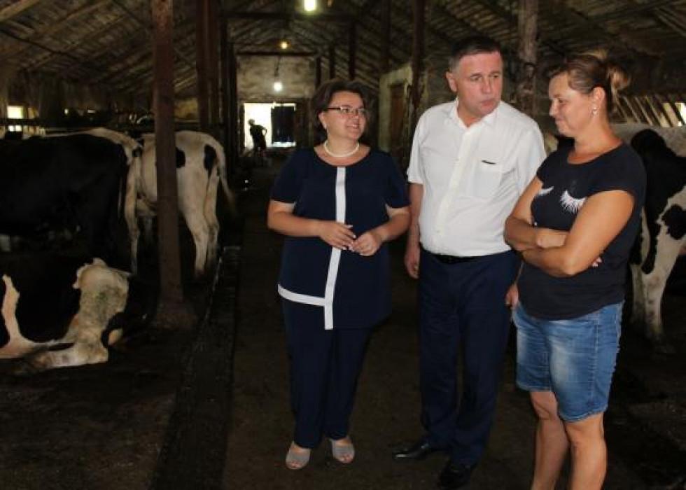 У Горохівському районі працює найбільш ефективний в області сільськогосподарський обслуговуючий кооператив молочного напрямку «Степ»