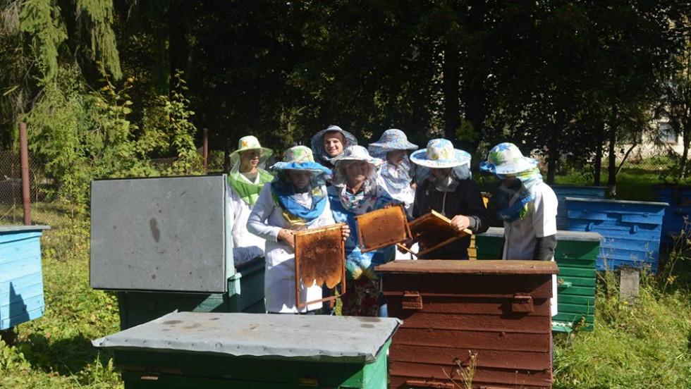 Зайшли в «гості» до бджіл