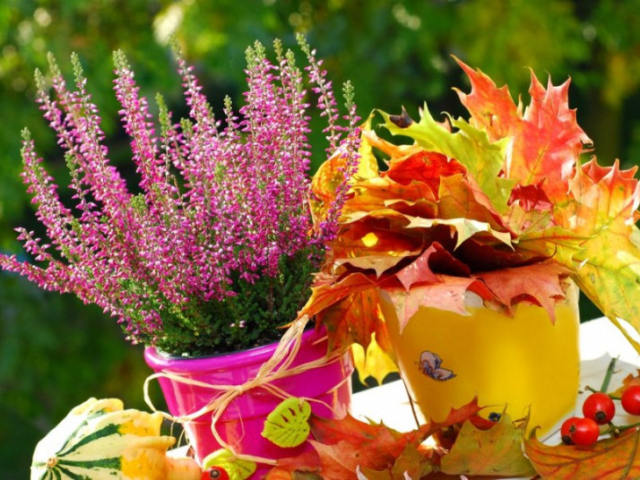 1 жовтня: яке сьогодні свято, до кого йдемо святкувати