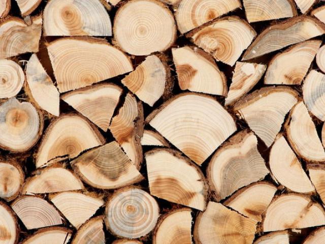 Де волиняни можуть придбати дрова
