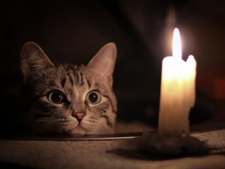 Де на Горохівщині не буде світла