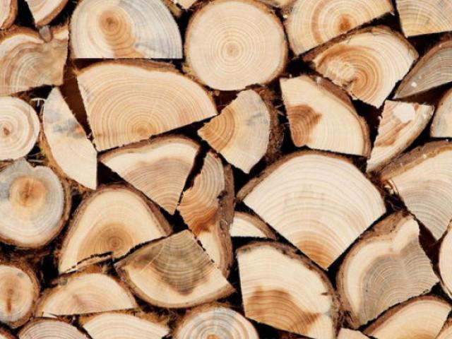 Де на Горохівщині можна купити дрова