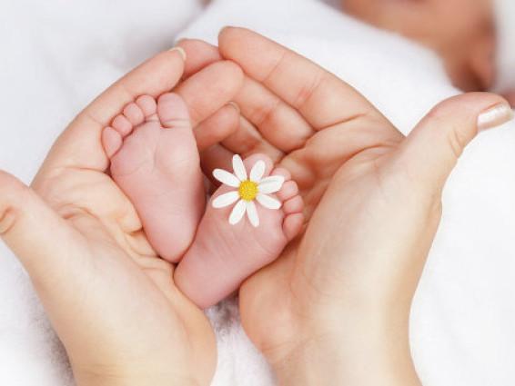 У Горохові в новому році першою народилася дівчинка