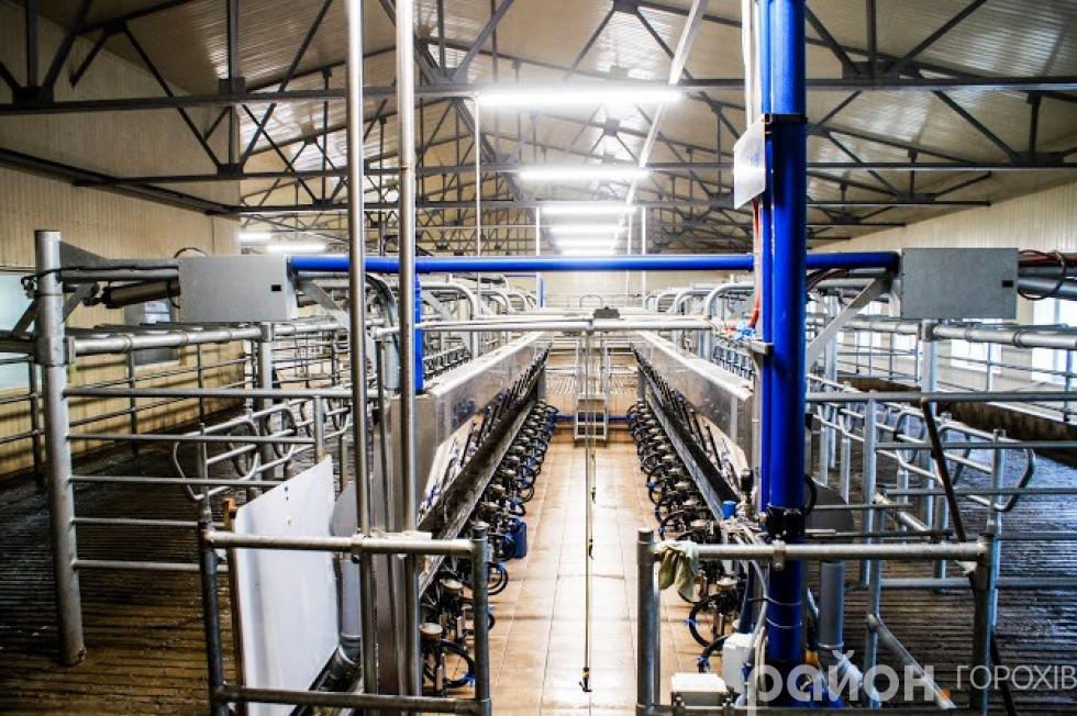 Сучасна зала для доїння корів «ДеЛаваль»