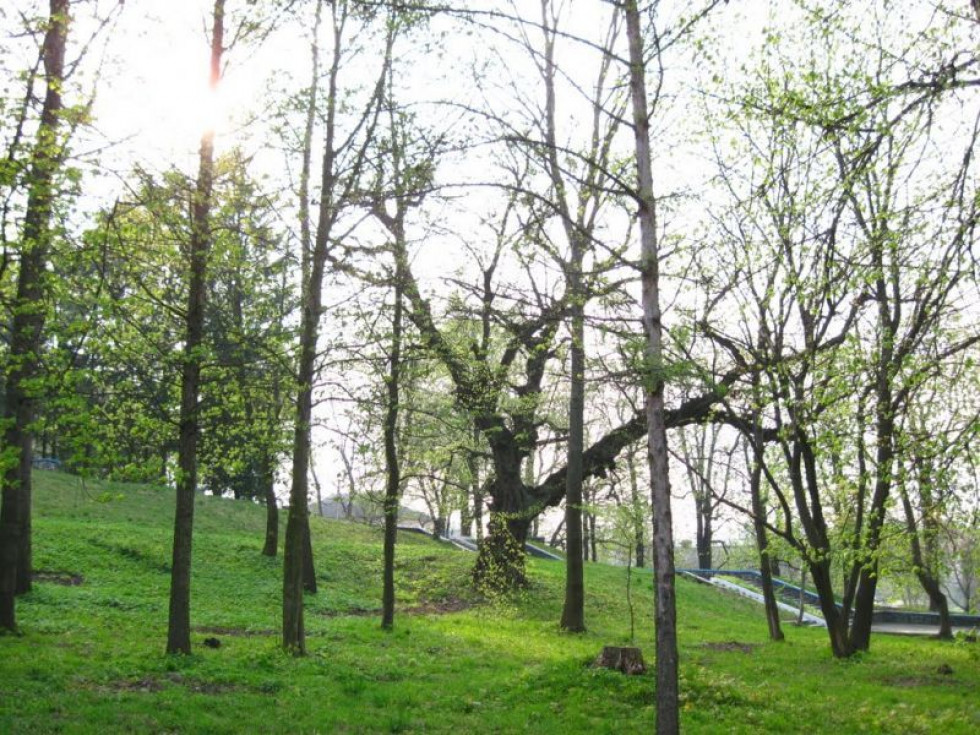 Парк у Горохові
