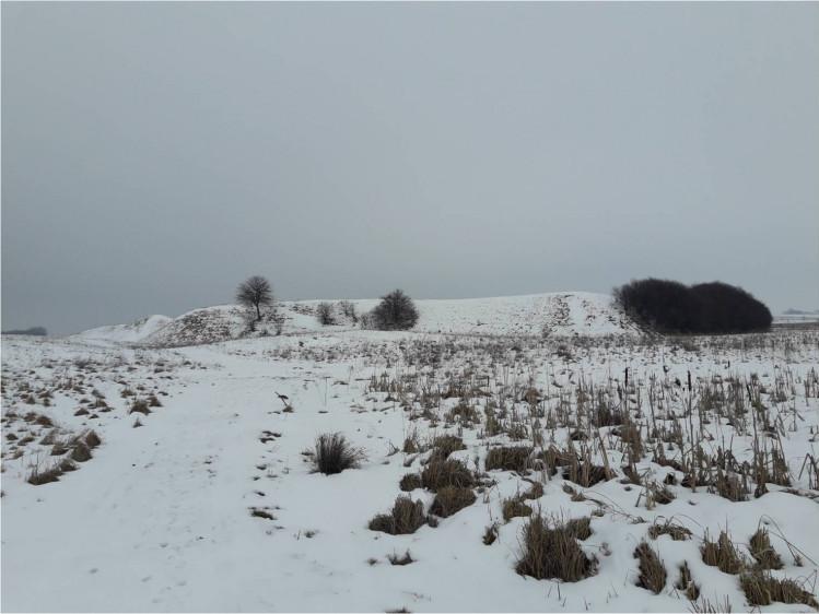 Заплавне городище села Борисковичі