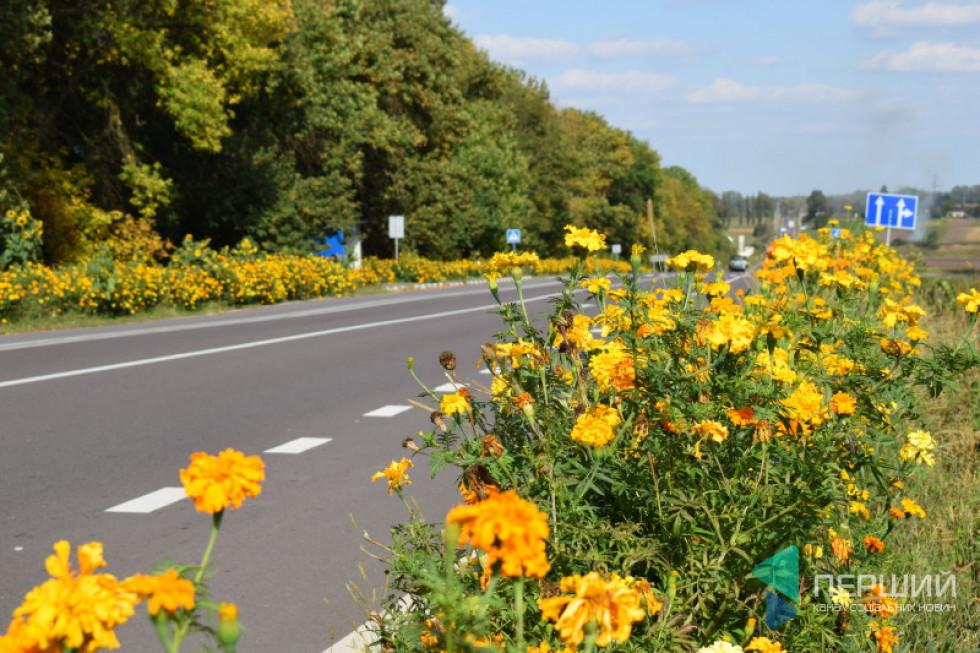 Дорога в квітах