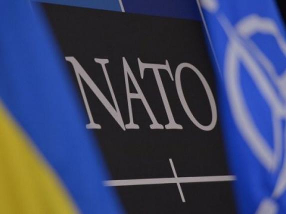 Членами НАТО є 29 країн