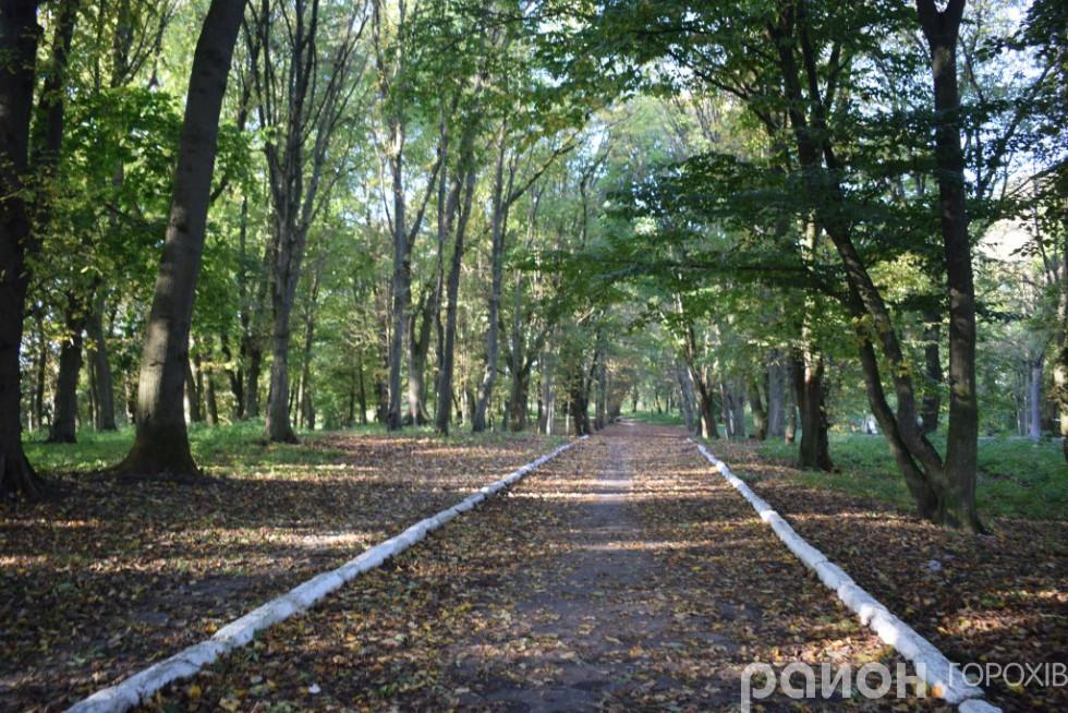 Сучасний вигляд парку Пляторів